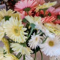 kvety_iveta_nz_rezane-8