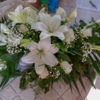 kvety_iveta_nz_vence-17