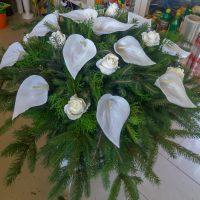 kvety_iveta_nz_vence-26