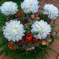 kvety_iveta_nz_vence-33