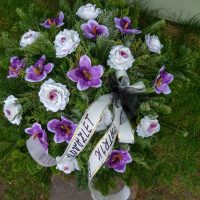 kvety_iveta_nz_vence-50