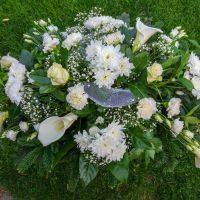 kvety_iveta_nz_vence-54