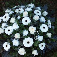 kvety_iveta_nz_vence-9